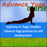 Yoga Vidya Gurukul, India: Advance Yoga Course